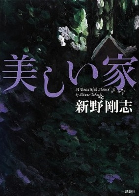 『美しい家』著:新野剛志(講談社/1,680円)