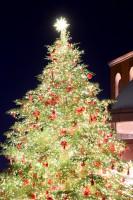 【クリスマス】木村文乃さんのインスタに思わずニコッ