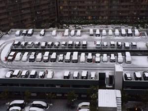 朝、新聞を取りにいくときに思わずパチリ。ウチの団地の駐車場が、雪化粧でなんだかカワイイ