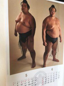 去年の大相撲カレンダーでは両大関として5、6月で並んでいた。琴奨菊は残念ながら大関返り咲きは昨日の変化相撲で断たれた。めいっぱいの相撲で負けたのなら諦めはつくが…